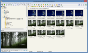 Faststone image viewer - free photo management software